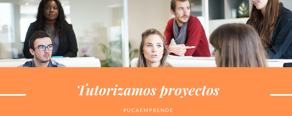 4. Tutorización